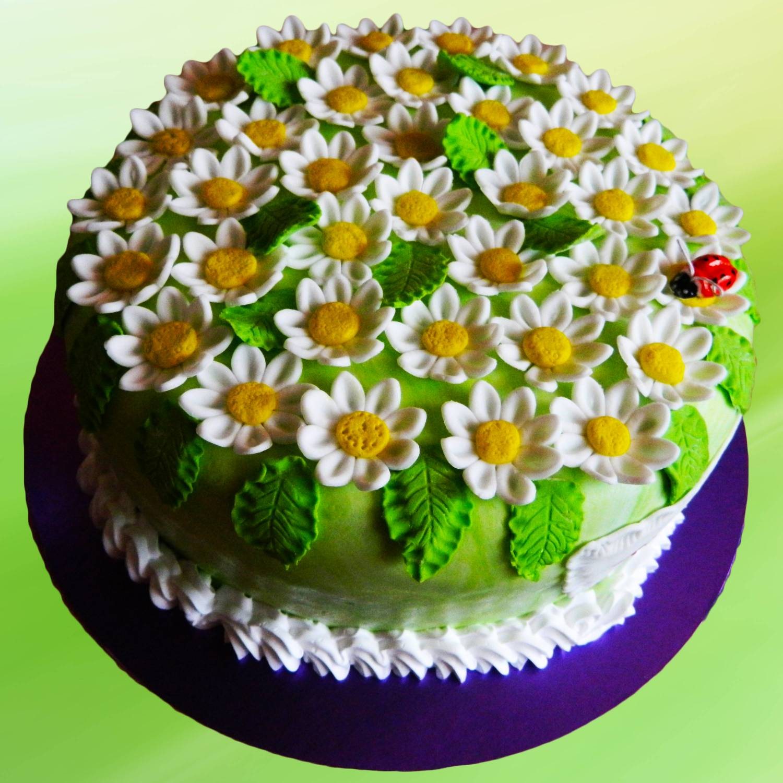 Торт ромашка своими руками 17